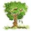 L'entretien des arbres sur votre propriété