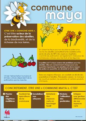 Maya 2.PNG