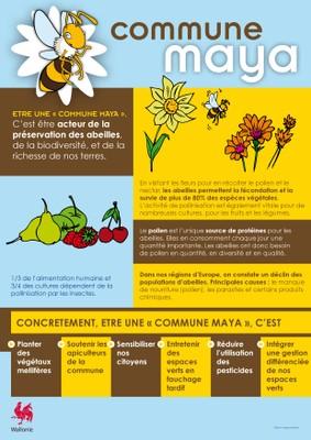 Une commune Maya concretement c est-page-001.jpg